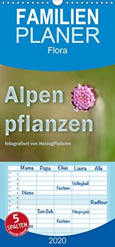 Alpenpflanzen fotografiert von HerzogPictures - Familienplaner hoch (Wandkalender 2020 , 21 cm x 45 cm, hoch): Impressionen von Alpenflanzen ganz nah (Monatskalender, 14 Seiten ) (CALVENDO Natur)