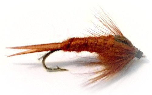 Fly Fishing Flies Assortment- Brown Stonefly Nymph - Four Size Assorted Variety Size 12,14,16,18 (3 of Each Size) Hand Tied for Trout and Other Freshwater Fish