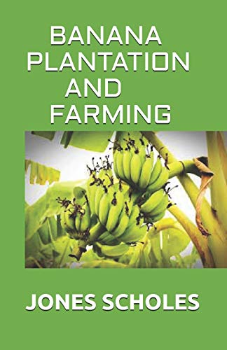 BANANA PLANTATION AND FARMING: All You Need To Know About Banana And Make Huge Amount On It