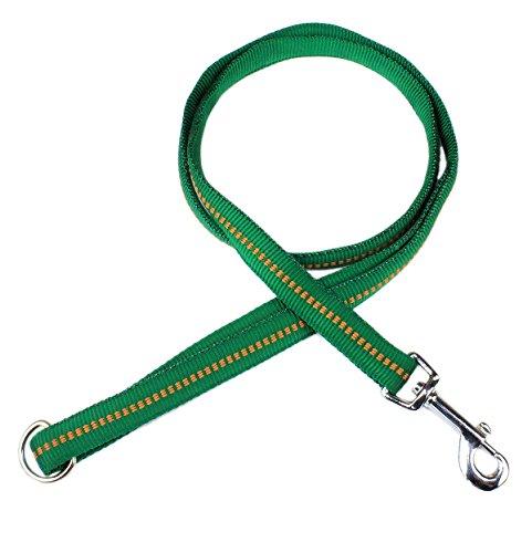 Ernst Koch G4212512 Nylon-Leine  mit Handschlaufe  gepolstert, L, grün