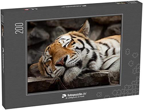 Puzzle 200 Teile schlafender Tiger Gesicht Porträt - Klassische Puzzle, 1000/200/2000 Teile, in edler Motiv-Schachtel, Fotopuzzle-Kollektion 'Tiere'
