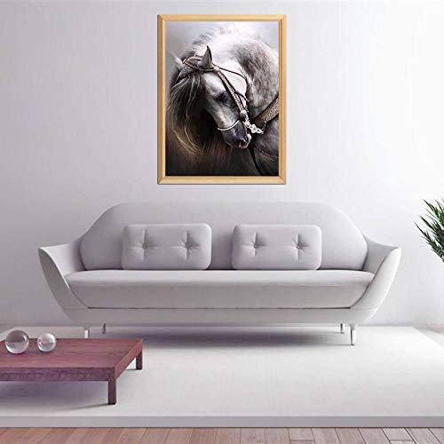 Fijne Paard Patroon 5D DIY Diamant Schilderen Volledige Diamant Borduren te koop Strass Steentjes Mozaïek Handwerk Schilderijen (Zonder Framed) 40x50cm