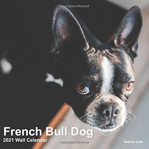French Bulldog: 2021 Mini Wall Calendar (Furry Dog Friends)