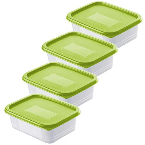 Rotho Domino 4er Set Gefrierdosen 0.5l mit Deckel, Kunststoff (PP) BPA-frei, grün/transparent, 4 x 0,5l (15,7 x 11,8 x 5,5 cm)