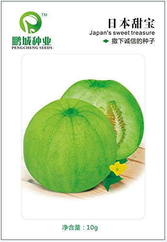 Graines de fruits japonais melon sucré trésor de graines croustillantes et délicieuses peuvent passer dans des pots de 10 g.