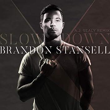 Slow Down (A.J. Sealy Remix)