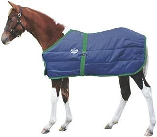 Best foal winter blankets Reviews