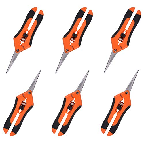 GROWNEER 6 Packs Pruning Shears Gardening Hand Pruning Snips with Straight Stainless Steel Precision Blades
