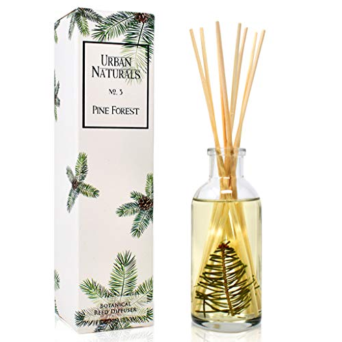 Urban Naturals Pine Forest Reed Diffuser Oil with Bamboo Reed Sticks   Pine Needles, Eucalyptus, Juniper Berries & Balsam Fir   Christmas Tree Scent   Holiday Decor with Real Frasier Fir Branches