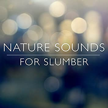 Nature Sounds for Slumber