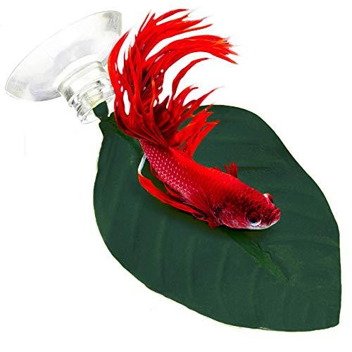 SunGrow Hamacas de hojas para peces Betta, 6 pulgadas, punto de descanso ligero y realista, cama de plástico verde oscuro, cómodo, fácil de acoplar, ventosas incluidas, paquete de 3
