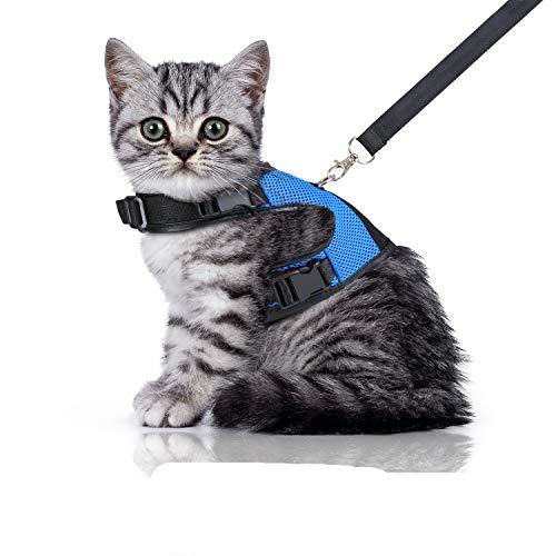 Bella & Balu Pettorina per gatti con guinzaglio - Imbracatura gatto robusta e resistente agli strappi con fodera morbida e rete traspirante - per camminare spensieratamente