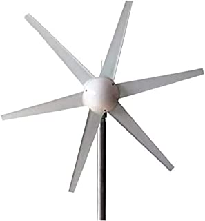 COUYY Generador de Viento, 6 Palas de aerogeneradores 12V 24V, 1 m/s Comenzar la Velocidad del Viento generador de turbina de Viento 400W CE trifásica y RoHS Aprobado,24v