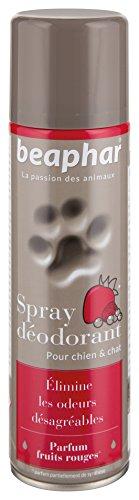BEAPHAR – Spray déodorant parfum fruits rouges pour chien et chat – Élimine les odeurs désagréables et donne une sensation de fraîcheur au poil – Pratique et facile à appliquer – Aérosol 250 ml