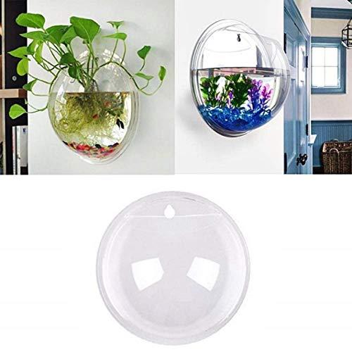 KIRALOVE Wandaquarium - 15 cm - glasfisch - vase - wandgestaltung - wasserpflanzen im Fernsehen gesehen - originelle Geschenkidee - hervorragende qualität