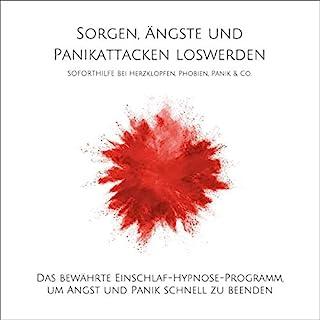Sorgen, Ängste und Panikattacken loswerden - Soforthilfe bei Herzklopfen, Phobien, Panik & Co. Titelbild