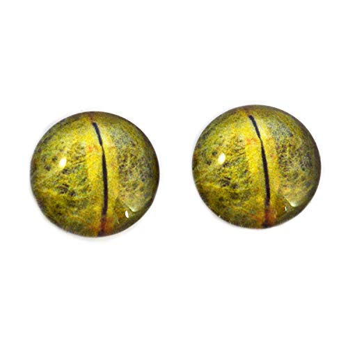 Detailed Python Snake Glass Eyes Realistic Animal Reptile Pair for Art Dolls, Sculptures, Props, Masks, Fursuits, Jewelry Making, Taxidermy, and More (20mm)