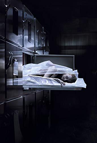 Lionbeen The Possession of Hannah Grace Movie Poster Filmplakat 70 X 45 cm