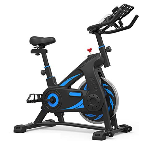 TWW Spinning Bicycle Female Exercise Bike Household Pedal Indoor Exercise Bike Weight Loss Gym Exercise Equipment,Blue