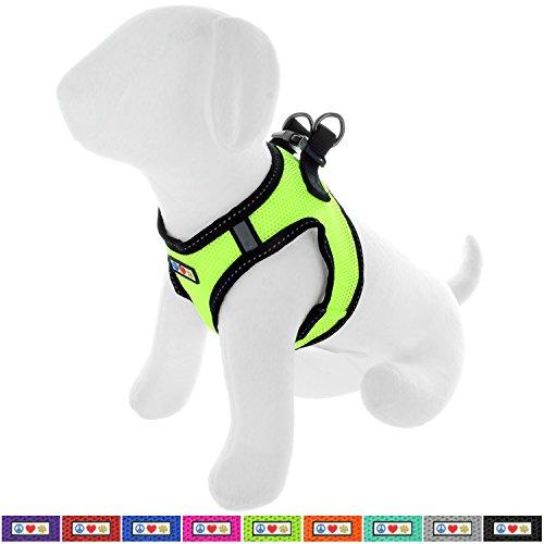 PAWTITAS Pet Reflektierendes Hundegeschirr Geschirr zum Hineintreten oder Umlegen, Komfortsteuerung, Trainieren Sie den Spaziergang Ihres Welpen/Hundes - Extra Extra Klein Hundegeschirr Grün