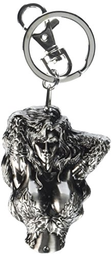 Give your keys character with this officially licensed DC Comics Pewter Key Ring from Monogram International. This durable real-metal key ring features a lobster-style clasp, as well as an O-ring attachment for securely fastening your keys. Attach to...