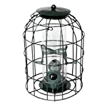 Natures Market BF008S Squirrel Guard Hanging Seed Feeder Wild Bird Garden Feeding Station - Multi Deals Available