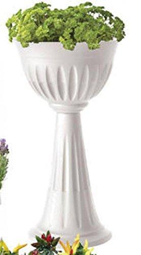 Bama Alba Cup, Fiore, 30 X 43 X 46 Cm, White, 30X43X74.5 Cm