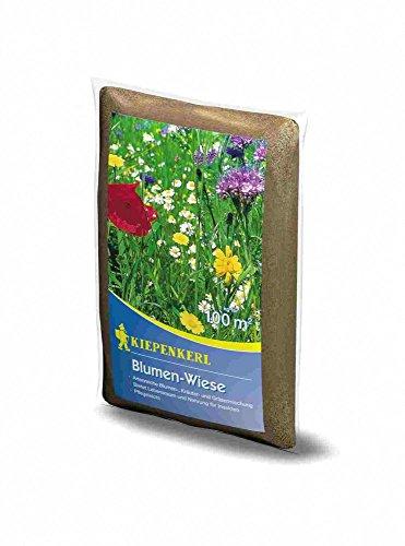 Kiepenkerl Blumen-Wiese 1Kg