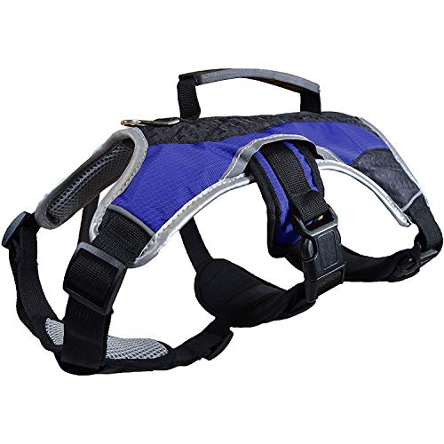 Dog Walking Lifting Carry Harness, Support Mesh Padded Vest, Accessory, Collar, Lightweight, No More Pulling, Tugging or Choking, for Puppies, Small Dogs (Blue, X-Small), by Downtown Pet Supply