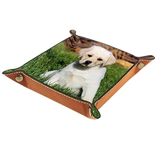 Bandeja de Cuero - Organizador - Perrito Labrador - Práctica Caja de Almacenamiento para Carteras,Relojes,llaves,Monedas,Teléfonos Celulares y Equipos de Oficina