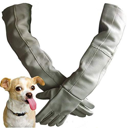 WEIW huisdier anti-beet handschoenen, koeienhuid verdikking en lange anti-piercing waterdichte dierentuin training hond kat bad handbescherming LUCKY