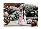 Flores secas, joyas de madera, collar, vial de flor colgante de cristal en miniatura