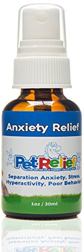 Dog Anxiety Relief - Soothes Dogs With Separation...