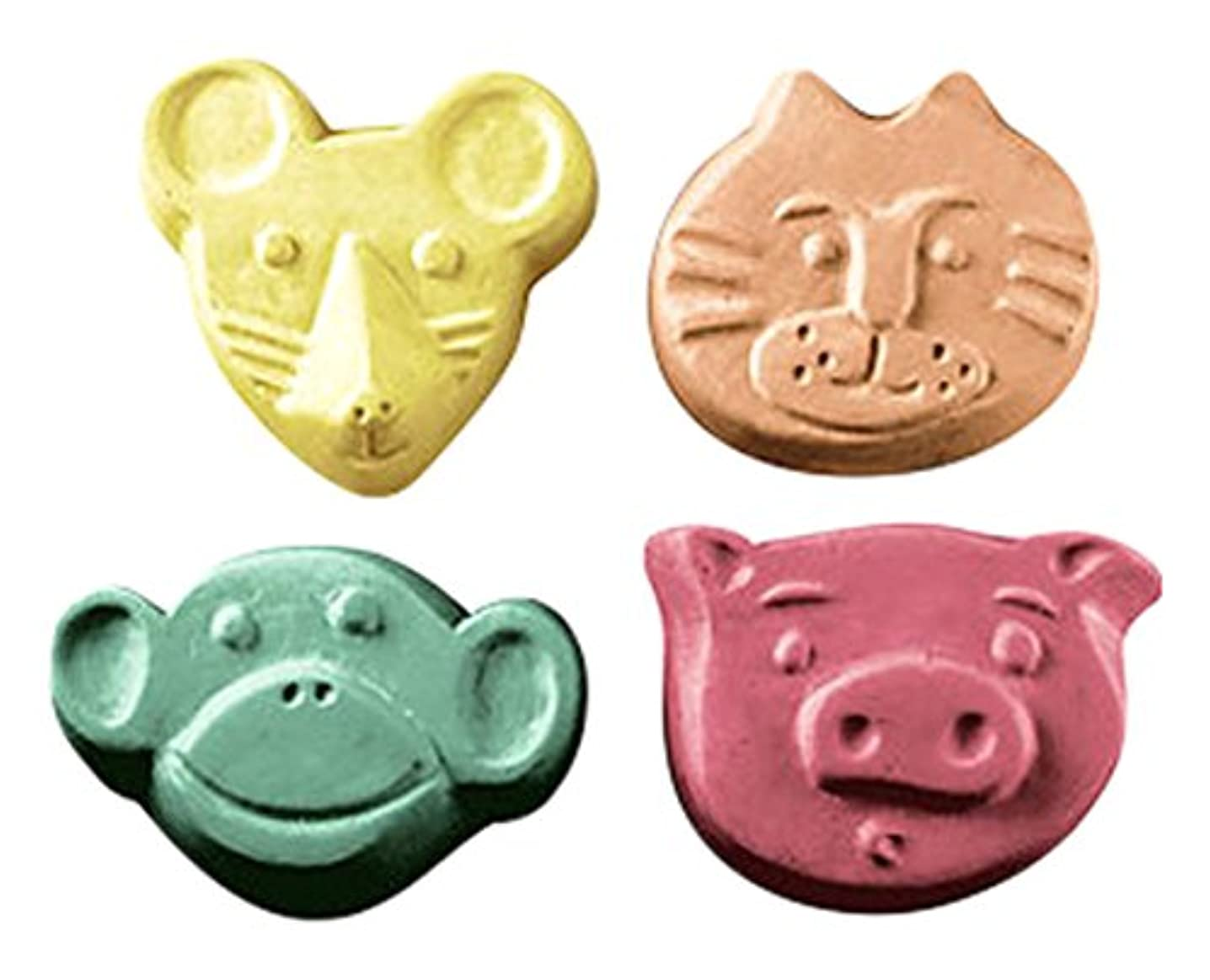 CybrTrayd Mouse, Cat, Pig, Monkey Guest Mold in Sealed Poly Bag, with Richly Illustrated 44-Page Soap Molder's Guide