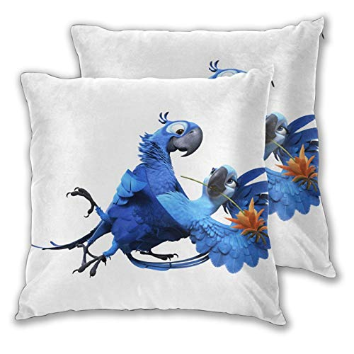 Obbligato Throw Pillow Covers Rio Angry Birds Square Pillowcases Modern Cushion Cases for Sofa Couch Bedroom Chair 20'x20'