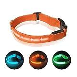 Collar de seguridad para perro con LED luminoso, recargable por USB, 3 modos de parpadeo, collar de seguridad para mascotas de longitud ajustable, para perros y gatos (naranja, L)