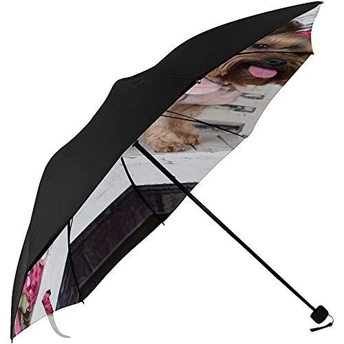 Umbrella Compact Golf Yorkshire Terrier Photosession Unterseite Druck Cape Umbrella Compact Umbrella Boys Mavy Umbrella