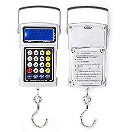 Balance de pêche Balance électronique numérique avec capteur précis pour extérieur pour sac de pêche