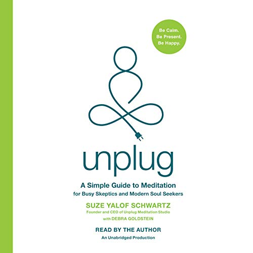 Unplug audiobook cover art