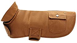 1.Great quality waterproof and windproof dog coat with special contoured shape, suitable for Dachshunds, Miniature Dachshunds and similar breeds. 2.Comfortable and warm - keep warm, especially keeps the hair less dog feel warm during the cold season....