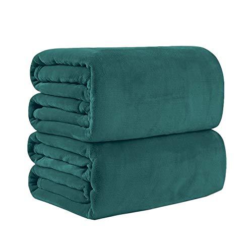 Bear & Panda Flannel Fleece Throw Blanket G Large Travel Sofa Bed Blankets Super Soft Fluffy Warm Thick Throws Microfibre Blankeyrey (Teal, 152 x 203 cm)