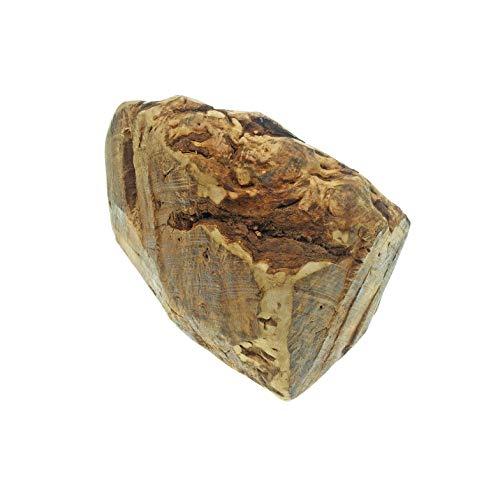 4Dogs Kauwurzel XXL aus luftgetrockneten Wurzeln der italienischen Baumheide | Kauspielzeug für Hunde aus unbehandeltem Naturholz | 100 % natürlich, 0 Kalorien | 1 Stück