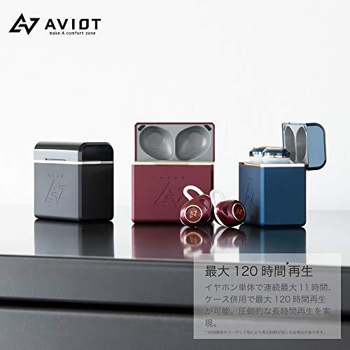 AVIOT(アビオット)『TE-D01dmk2』