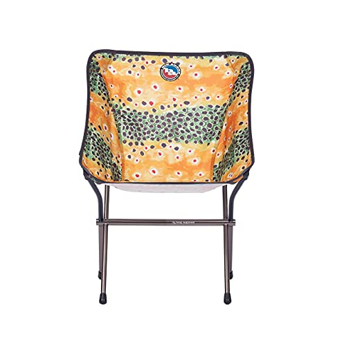 Big Agnes Mica Basin Camp Chair, Brown Trout