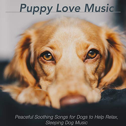 Puppy Love Music: Peaceful Soothing Songs for Dogs to Help Relax, Sleeping Dog Music