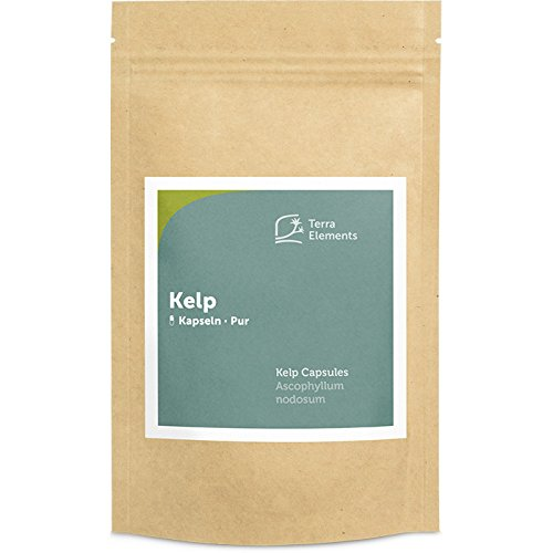 Terra Elements Kelp Kapseln (400 mg, 150 St) I Knotentang I Braunalge I Ascophyllum nodosum I Wildwuchs I 100% rein I Vegan I Rohkost