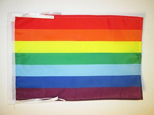 AZ FLAG Flagge Quechua VON BOLIVIEN UND Peru 45x30cm mit Kordel - QHICHWA Fahne 30 x 45 cm - flaggen Top Qualität