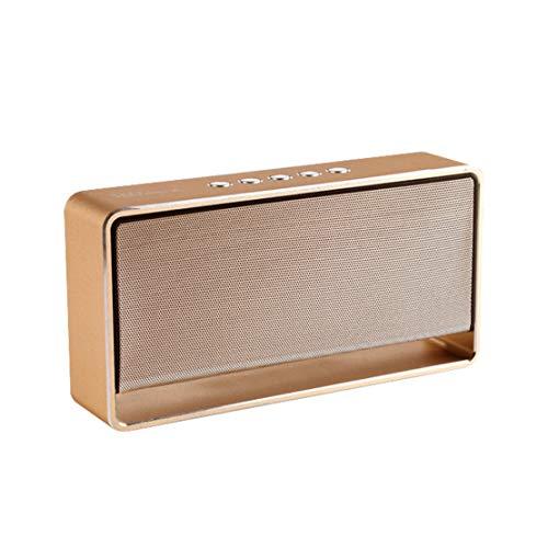 HIOD Bluetooth Altavoz Inalámbrico Estéreo Doble Altavoz Bajo Pesado Alcance Bluetooth 33 pies Colocarse Tarjeta AUX/SD,Gold