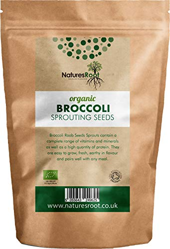 Nature Root Bio Brokkoli Sprießen Samen - Superfood | Nicht GVO | Microgreen Sprossen (1kg)