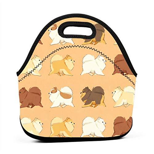 Sacchetto di Pranzo Pomerania Carino Tote Bag Sacchetti di Pranzo per Donna Uomo Lunch Organizer Porta Pranzo Borsa Termica per Pranzo isolata per Donna/Uomo